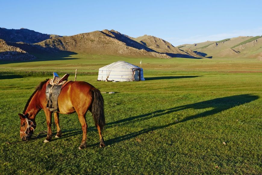 Campement nomade, Mongolie