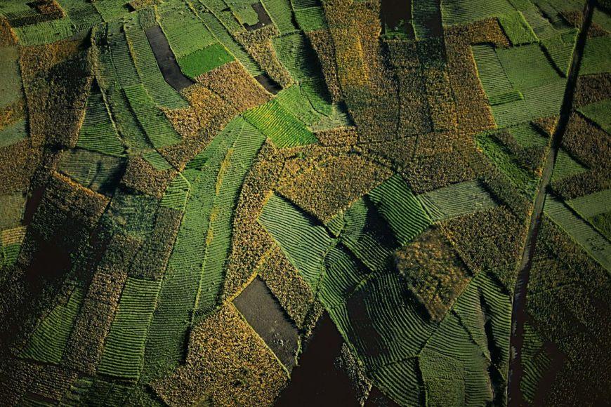 Paysage agricole, Guatemala