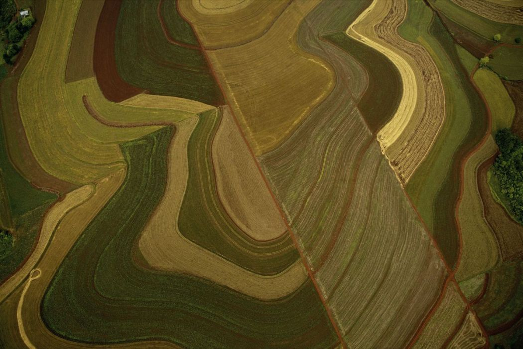 Fields, Uruguay river, Argentine