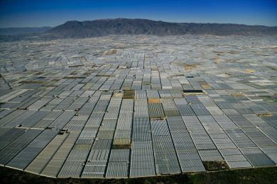 Greenhouses, Andalusia,  Spain