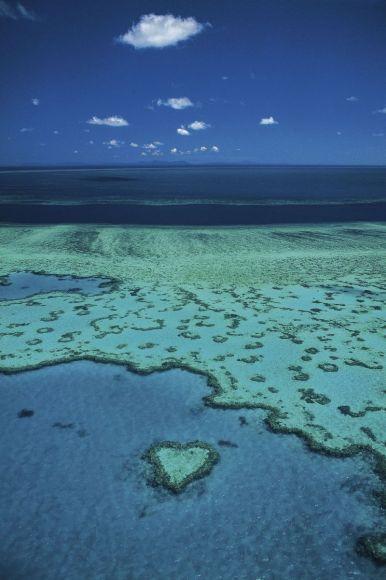 Australie, Queensland, Barrière de corail