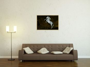 Andalusian horse, Art Photography