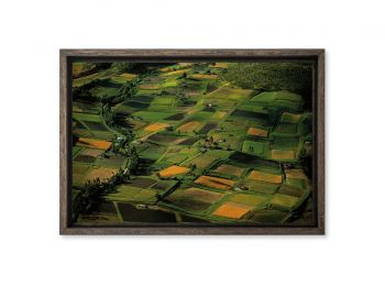 Fields in Ecuador